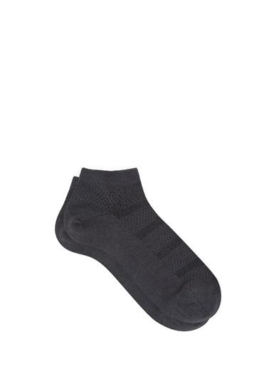 Mavi Çizgili  Patik Çorap Antrasit